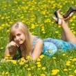 Royalty-Free Stock Photo: The girl in the meadow