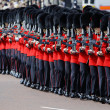 Trooping the Colour, London 2012 — Stock Photo #11216163