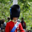 Stock Photo: Trooping Colour, London 2012