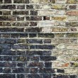 Grunge brick wall -  