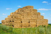 Straw bales stacked in a heap on the field — Stock Photo