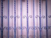 紫錬鉄フェンス — ストック写真
