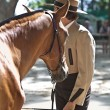 Equestrian competition — Stock Photo