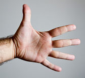 Open male hand showing palm and open fingers — Stock Photo