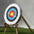 Archery Straw Target. — Stock Photo