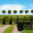 Garden of Peterhof — Stock Photo