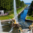 Fountain and golden statues in Peterhof — Stock Photo
