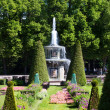 Roman Fountain in Peterhof — Stock Photo