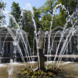 Fountain Adam in park Peterhof — Stock Photo