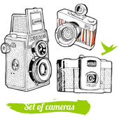 A set of vintage cameras, hand-drawn. — Stock Vector
