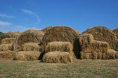 Hay stacks in field — Stock Photo