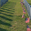 National Cemetery - Stock Photo