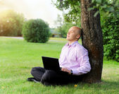 Businessman with laptop sitting near a tree — Stock Photo