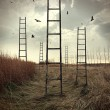 Ladders reaching to the sky in a autumn field - Стоковая фотография