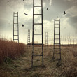 Ladders reaching to the sky in a autumn field - Zdjęcie stockowe