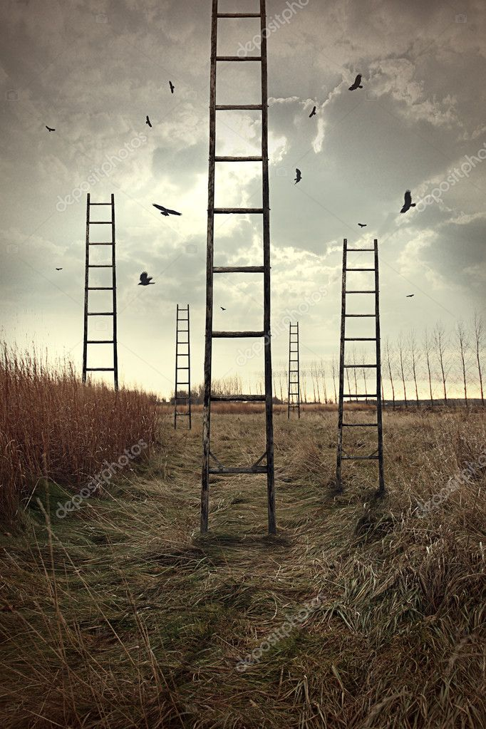 Ladders reaching to the sky in a autumn field — Stock Photo #11116527