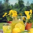 Fresh lemonade on a summer day - Stock Photo