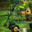 Summer gardening - Stock Photo