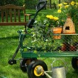 Summer gardening — Stock Photo #11642896