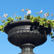Vase of white flowers against the blue sky — Stock Photo