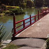 Japon bahçe su birikintisi arka plan üzerine köprü — Stok fotoğraf