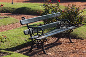 Lonely bench in the park on the grass background — Stockfoto