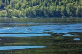 Pozadí vln na řeky a hory — Stock fotografie