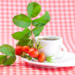 Cup of tea and rosehip berries with leaves on plaid fabric — Stock Photo #11927874