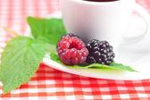 Fincan çay, ahududu ve böğürtlen ile ekose kumaş üzerine bırakır — Stok fotoğraf