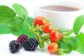 Cup of tea, blackberry,raspberry and rosehip berries with leaves — Stock Photo