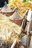 Autumn wooden cart — Stock Photo
