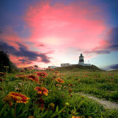 Lighthouse with nice view — Stock Photo