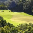 Stock Photo: Golf place with wonderful green