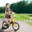 Little boy riding bike on country road outdoors — Stock Photo #10834711