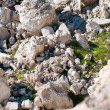 Stone abyss in rocks — Stock Photo