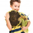 Little boy holding corn on the cob and sunflower ripe — Stock Photo