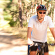 Stock Photo: Mon bike in sunny forest