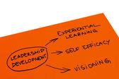 Leadership Development — Stock Photo