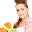 Housewife washing dish - Stock Photo