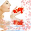 Red petals in water - Stock Photo