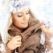 Winter beauty with snowflakes — Stock Photo