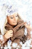 Beleza de inverno com flocos de neve — Foto Stock