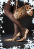Snakeskin shoes and handbag — Stock Photo
