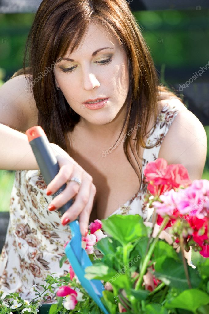 Bright picture of lovely housewife potting plants  Stock Photo #11766385