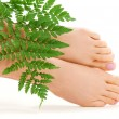 Female feet with green leaf — Stock Photo #11772323