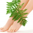Female feet with green leaf - Foto Stock