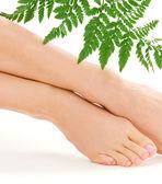 Female feet with green leaf — Stock Photo