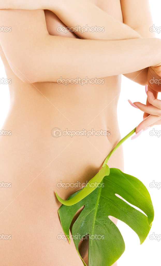 Picture of female torso with green leaf over white  Stock Photo #11774626
