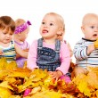 Royalty-Free Stock Photo: Babies group in yellow leaves