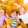 Babies lying on yellow leaves — Stock Photo